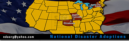 colorful national disaster adoptions graphic for advertisement